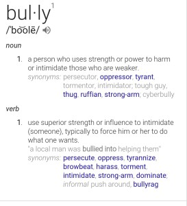 bully definition